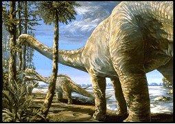 Apatosaurus fiche du dinosaure - Liste de dinosaures ...