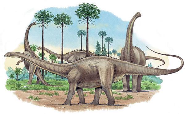http://dinonews.net/images/dinos/apatosaurus_nhmpl.jpg