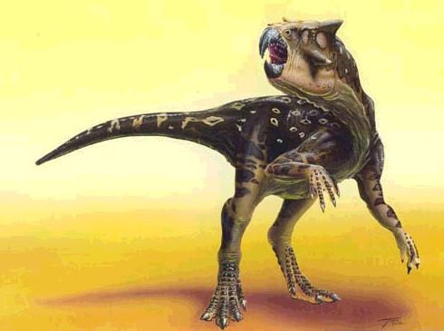 Psittacosaurus (© Todd Marshall)
