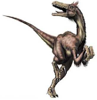 le vlociraptor selon csrnka