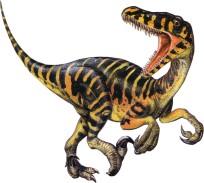 raptor93
