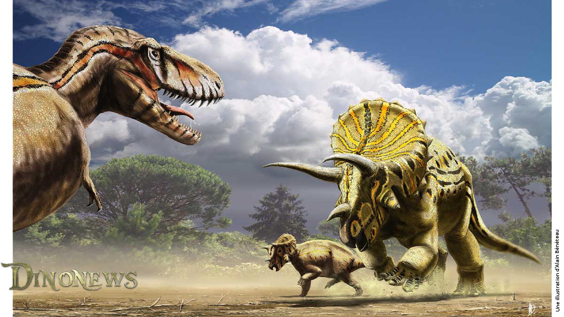 Fonds Décran Sur Le Thème Des Dinosaures